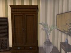 mesh-cupboard