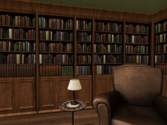 second life books in bookcases