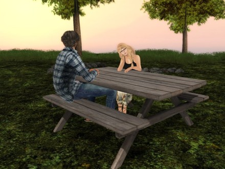 second life picnic table
