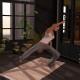 Second Life yoga mat up