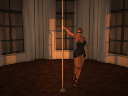 second_life_pole_dance