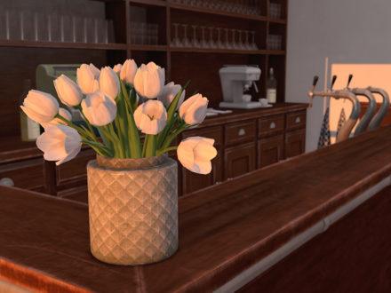 Dutchie color change tulips